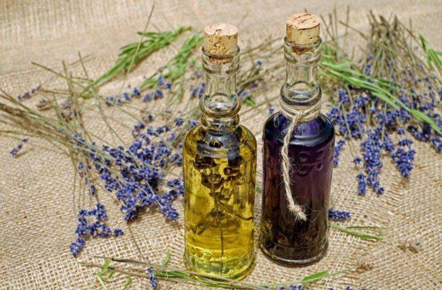 Jak dobierać oleje do skóry głowy?